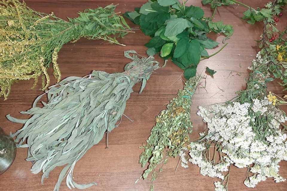 warsztat zielarski