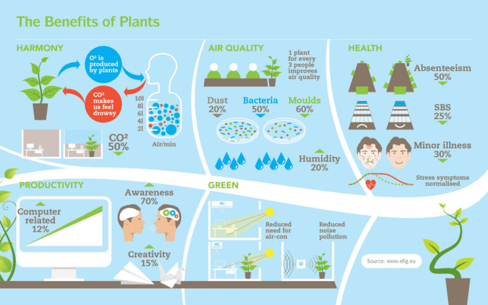 benefitsofindoorplants_infographic