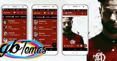 Tema GBWhatsapp – Diego no Flamengo