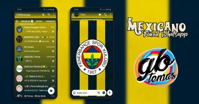 Tema Fouad Whatsapp - Fenerbahçe