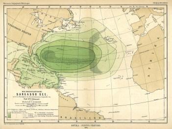Sargasso Sea Map