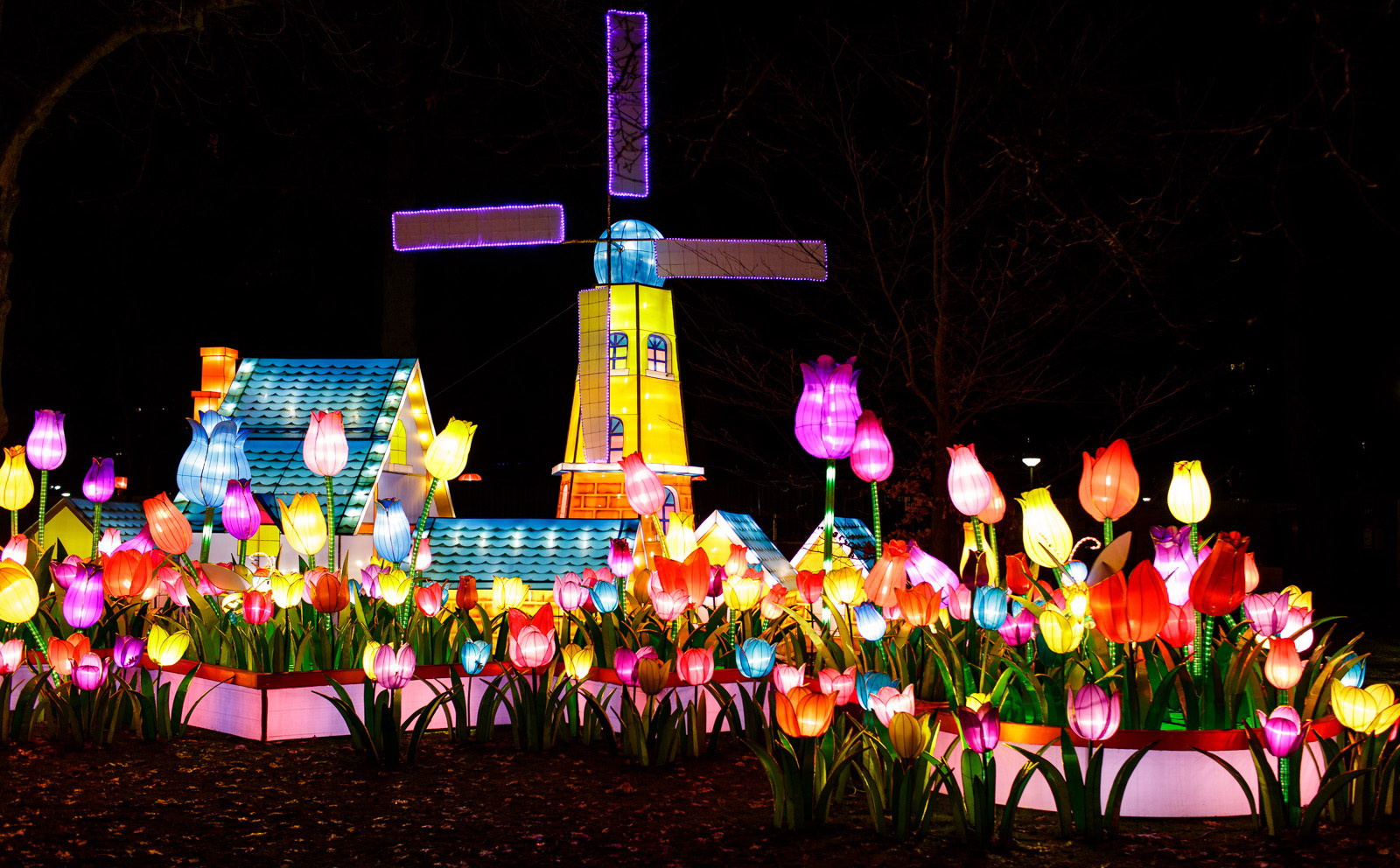 Installation Of Lanterns For China Lights Event Is