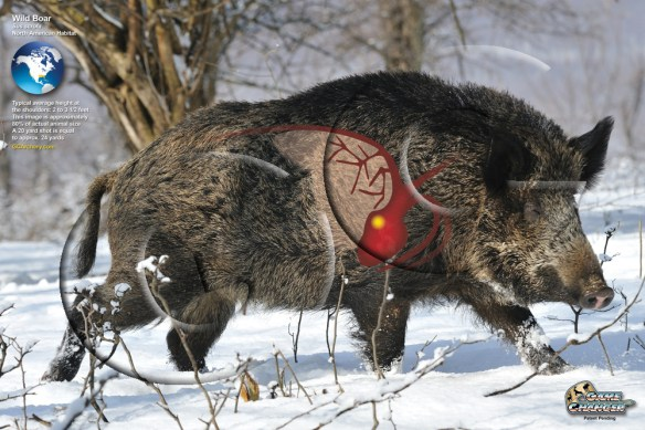 Image result for Wild Boar Vitals