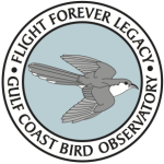 Flight Forever Legacy logo2