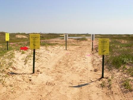 Beach Nesting Birds Project 2016 Update 3 Gulf Coast