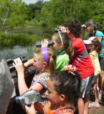Summer Bird Camp - Gulf Coast Bird Observatory
