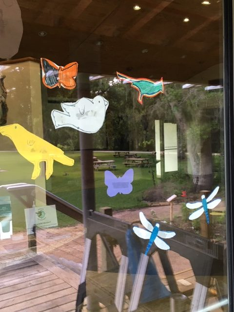 cutouts of birds and other animals taped to a window