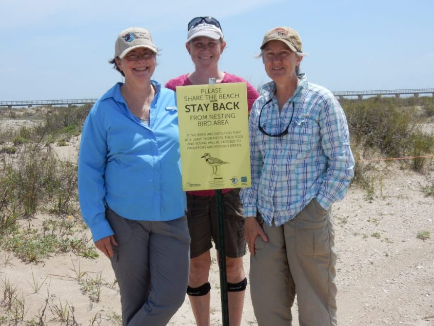 three smiling volunteers stand with a beach nesting birds sign