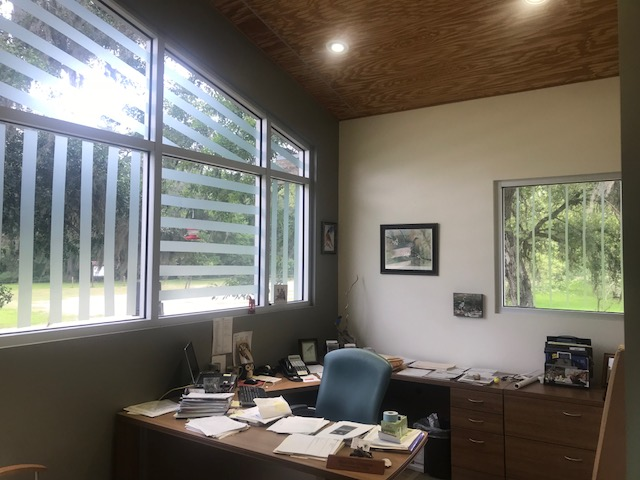 inside view of an office with a large window decorated with bird tape