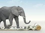 How do you eat an elephant?