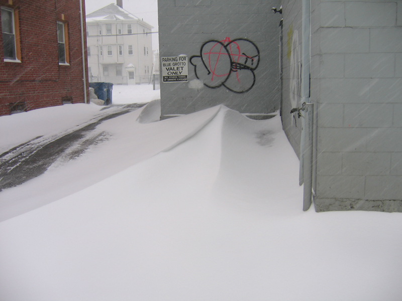 Blizzard | March 2, 2009