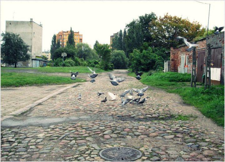 ulica Wspornikowa