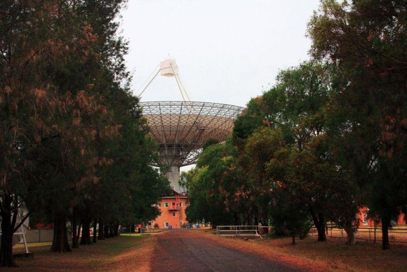 Dish, jak się go nazywa w Australii