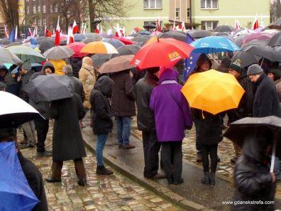parasole mieli prawe wszyscy