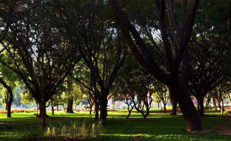 Cubbon Park fot. Augustus Binu, Wikipedia
