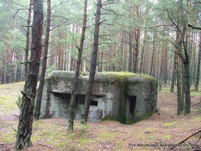Polski bunkier nad Widawką widok obecny