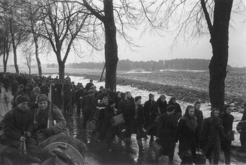 Kolumna pochwyconych w zdobytym Elblągu niemieckich kobiet i mężczyzn przeznaczonych do deportacji w głąb Związku Sowieckiego. Luty 1945, fot. Borys Wieljaszew.