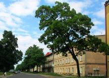 ulica Chrobrego