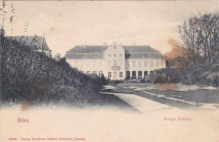 Palac Opatow 1910
