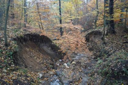 Erozja cieków leśnych wywołana brakiem retencji w obszarach zabudowanych Gdańska - Złotej Karczmy i Matarni