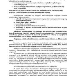 Michał Przybylski_3