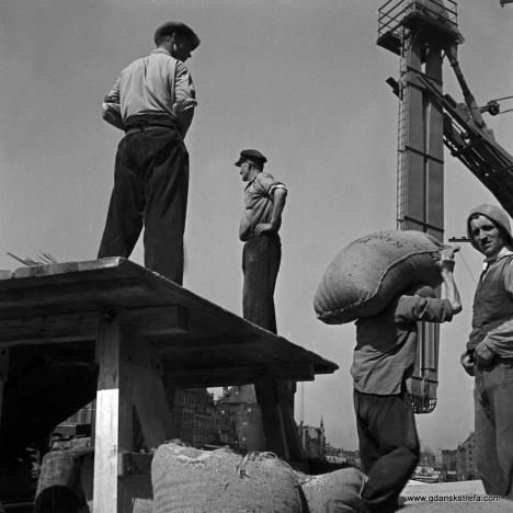 Gdańscy tragarze. Fotografia z 1930 roku. fot. Heinrich Lammel