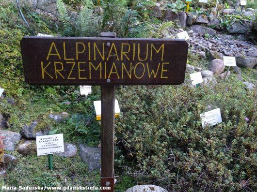 Alpinarium krzemianowe