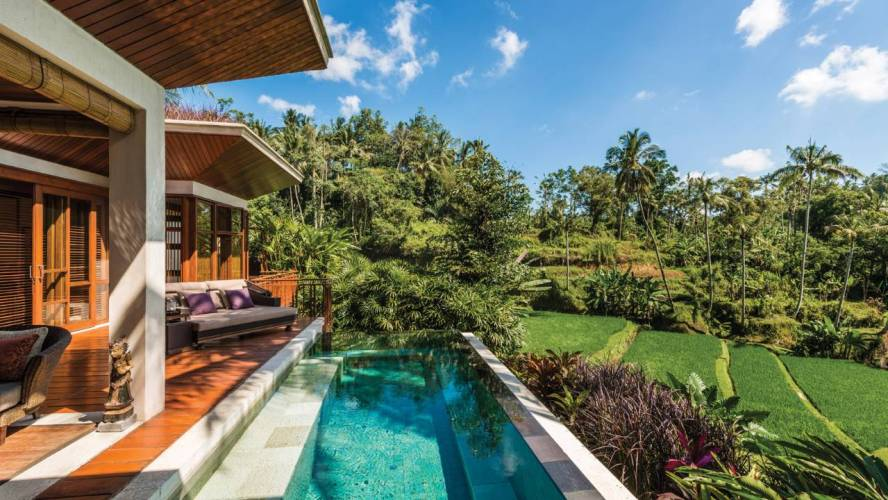 Rice Fields view Four Seasons Bali at Sayan