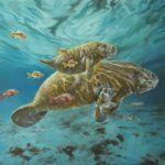 Beautiful Manatee Illustration - Products and Prints available!