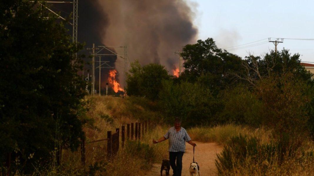 Două suburbii din Atena, evacuate din cauza unui incendiu care a mistuit câteva case