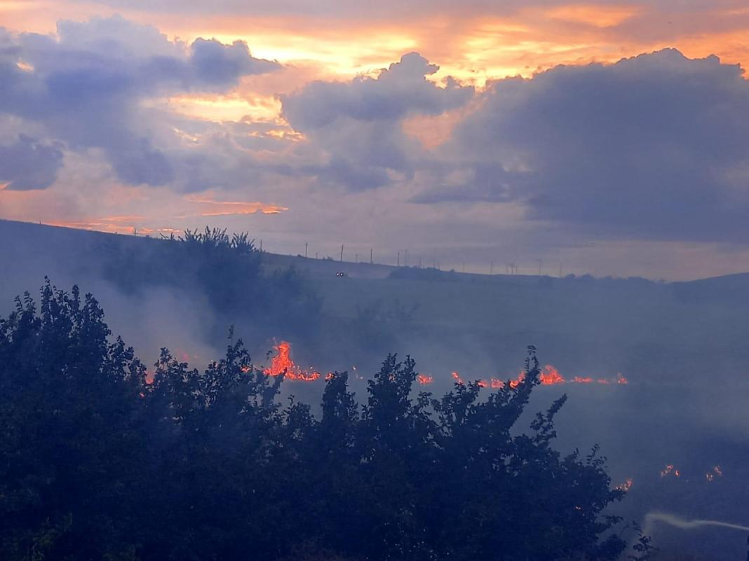 Zece hectare de stuf și vegetație ard în zona lacului Babadag