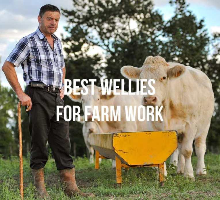 10 Best wellies for farm work