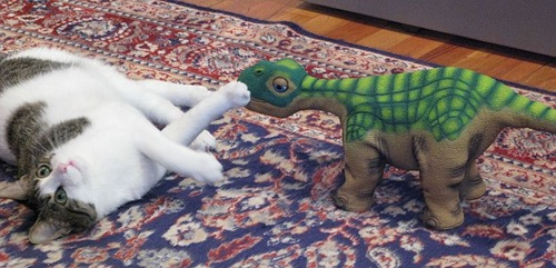 The Ugobe Pleo Robotic Dinosaur Review  The Ugobe Pleo Robotic Dinosaur Review  The Ugobe Pleo Robotic Dinosaur Review  The Ugobe Pleo Robotic Dinosaur Review  The Ugobe Pleo Robotic Dinosaur Review  The Ugobe Pleo Robotic Dinosaur Review  The Ugobe Pleo Robotic Dinosaur Review  The Ugobe Pleo Robotic Dinosaur Review  The Ugobe Pleo Robotic Dinosaur Review  The Ugobe Pleo Robotic Dinosaur Review  The Ugobe Pleo Robotic Dinosaur Review  The Ugobe Pleo Robotic Dinosaur Review  The Ugobe Pleo Robotic Dinosaur Review  The Ugobe Pleo Robotic Dinosaur Review  The Ugobe Pleo Robotic Dinosaur Review  The Ugobe Pleo Robotic Dinosaur Review  The Ugobe Pleo Robotic Dinosaur Review  The Ugobe Pleo Robotic Dinosaur Review  The Ugobe Pleo Robotic Dinosaur Review  The Ugobe Pleo Robotic Dinosaur Review  The Ugobe Pleo Robotic Dinosaur Review  The Ugobe Pleo Robotic Dinosaur Review  The Ugobe Pleo Robotic Dinosaur Review  The Ugobe Pleo Robotic Dinosaur Review  The Ugobe Pleo Robotic Dinosaur Review  The Ugobe Pleo Robotic Dinosaur Review  The Ugobe Pleo Robotic Dinosaur Review  The Ugobe Pleo Robotic Dinosaur Review  The Ugobe Pleo Robotic Dinosaur Review  The Ugobe Pleo Robotic Dinosaur Review  The Ugobe Pleo Robotic Dinosaur Review  The Ugobe Pleo Robotic Dinosaur Review  The Ugobe Pleo Robotic Dinosaur Review  The Ugobe Pleo Robotic Dinosaur Review