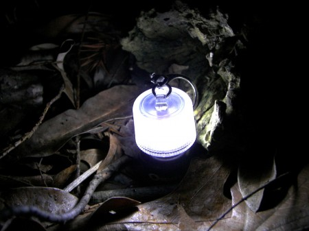 Coghlan\'s LED Micro Lantern in the Leaves