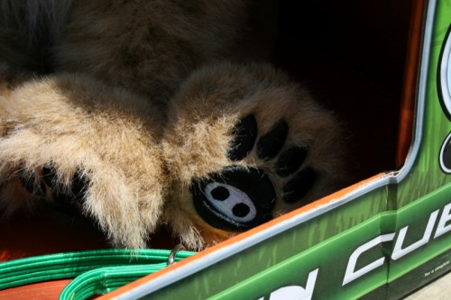 The WowWee Alive Lion Cub Review