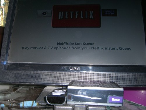 The Netflix Player by Roku Review