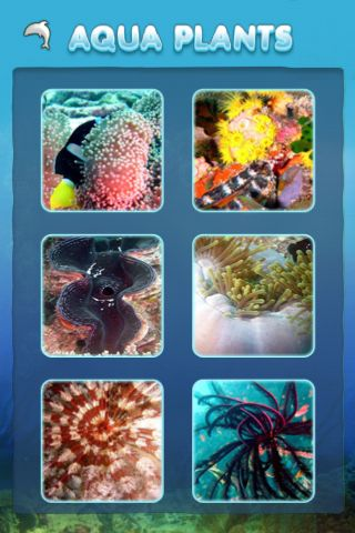 Review:  Aqua Jigsaw for iPhone OS  Review:  Aqua Jigsaw for iPhone OS  Review:  Aqua Jigsaw for iPhone OS