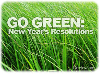 nyr-go-green