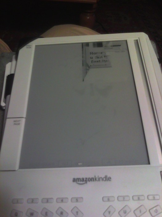The Circle of Technological Life, or, RIP Kindle 1