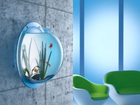 Synthetik Park's Wall Aquarium Is Eye-Level Gorgeous
