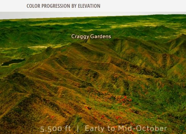 color-progression