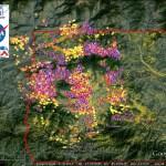 NASA damage maps
