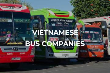 Bus companies Vietnam