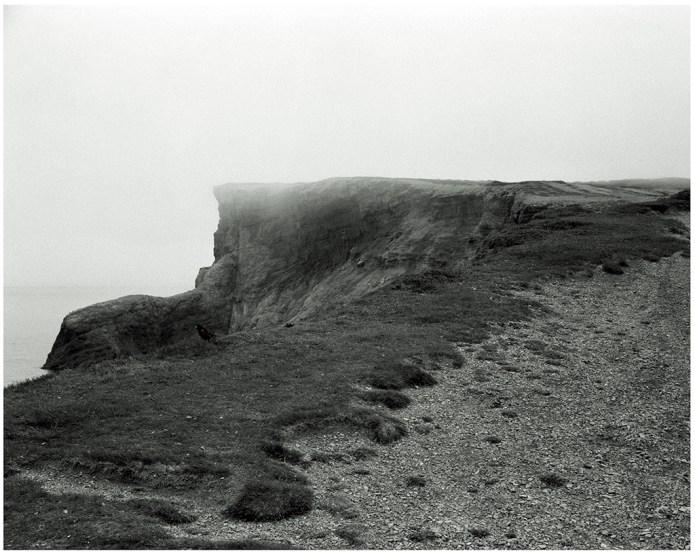 Cliff, Fog, Bird - Cap St. George NL (103.8 cm x 93.8 cm)