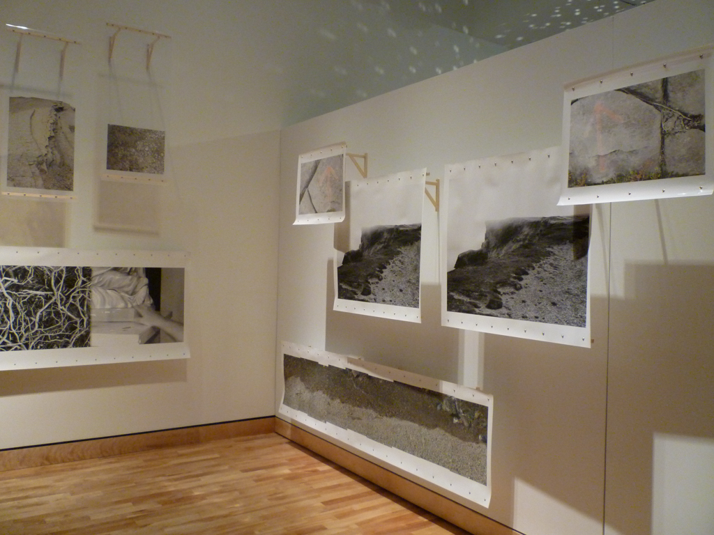Installation at The Rooms Provincial Art Gallery, St. John's NL.