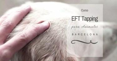 EFT tapping para perros