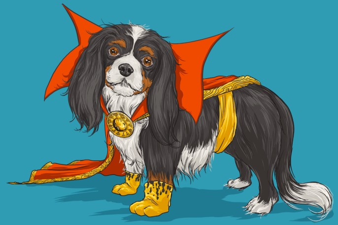 Josh Lynch -  Dog Dr Strange