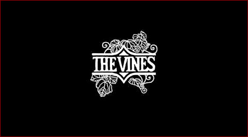 The Vines - She's got something to say to me