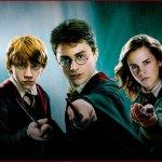 Harry Potter [8 films]