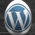Social Media Egg: WordPress
